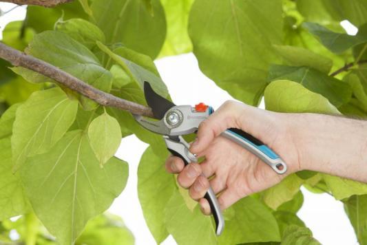 Купить Секатор контактный Gardena B/L большой серый/черный 07726-20.000.00