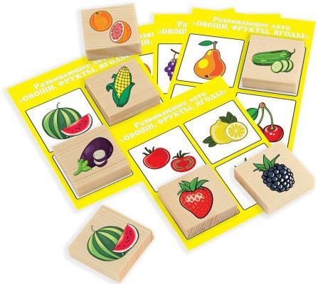 Настольная игра Русские деревянные игрушки лото Фрукты-Овощи (24 деревянных фишки + 6 карточек) Д533а