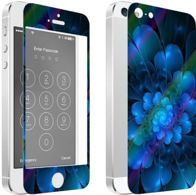 Комплект для защиты из 2 цветных стекол для iPhone 5/5S/SE DF iPicture-02 (Flower)