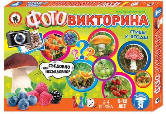 Настольная игра развивающая Русский Стиль Фотовикторина - Грибы и ягоды 3435