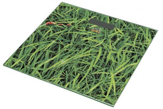 Весы напольные Irit IR-7248 зелёный рисунок сетевое зарядное устройство ginzzu ga 3025 5а usb черный